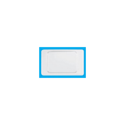 Công tắc schneider 2031L1_2A_G19